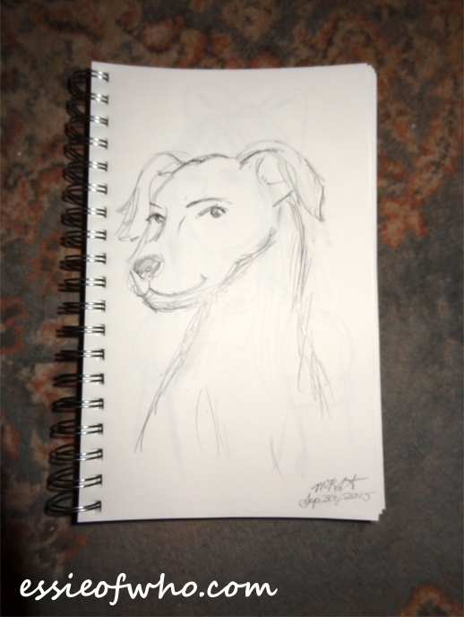 daily sketches september 2015 (4)