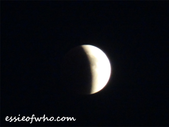 super blood moon (2)