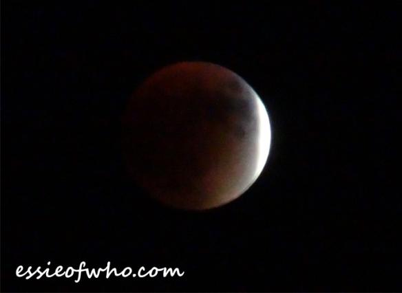 super blood moon (3)