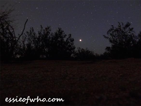 super blood moon (5)